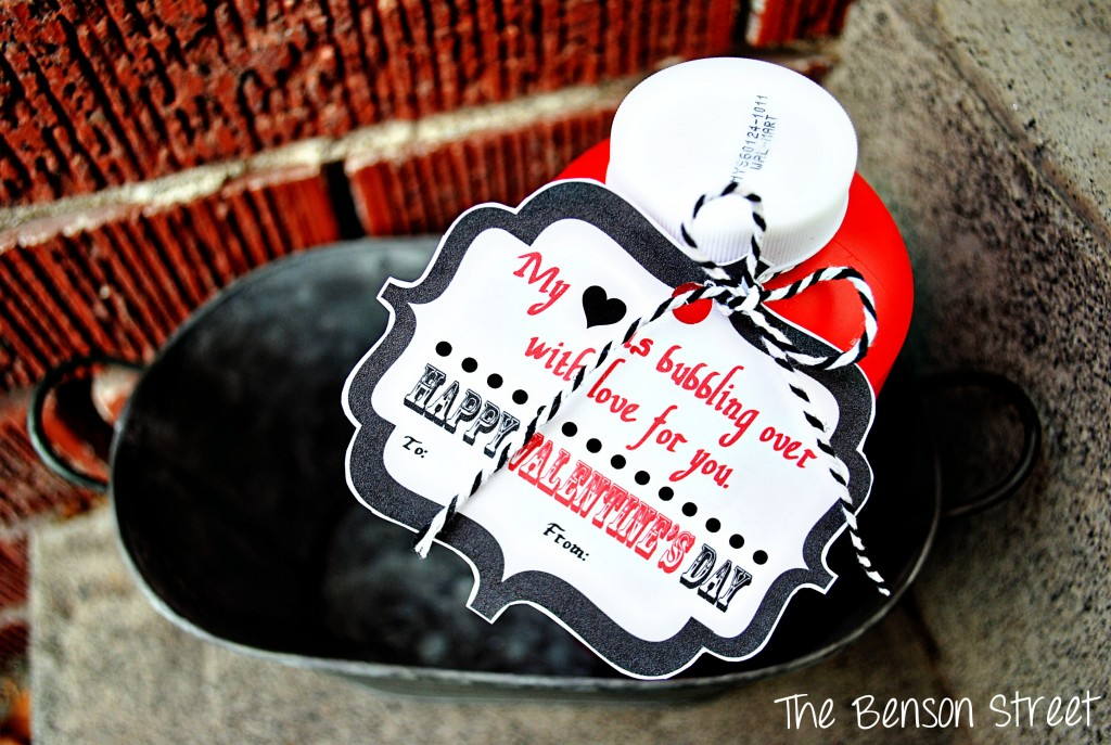 Bubbles Valentine Printable at The Benson Street4