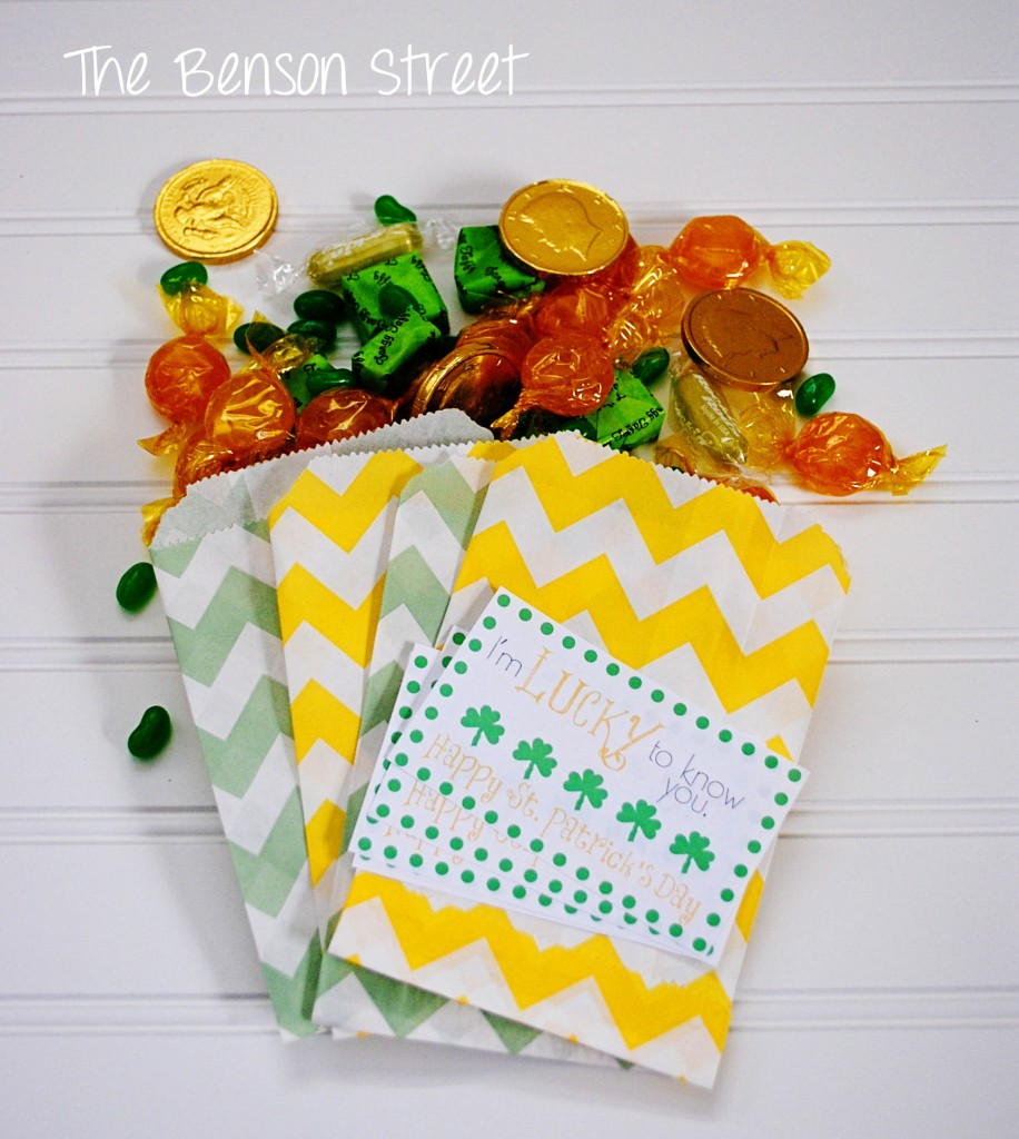 7Lucky Treat Bags at www.thebensonstreet.com