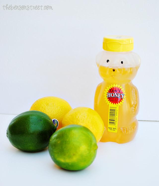 Easy Lemon Lime Infused Water