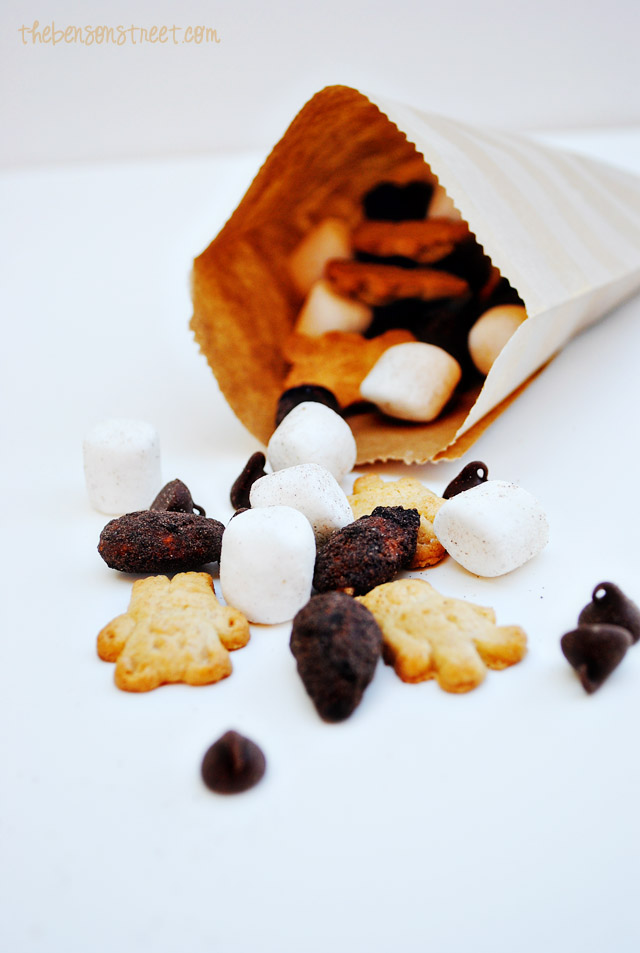 Quick & Easy S'mores Trail Mix at thebensonstreet.com